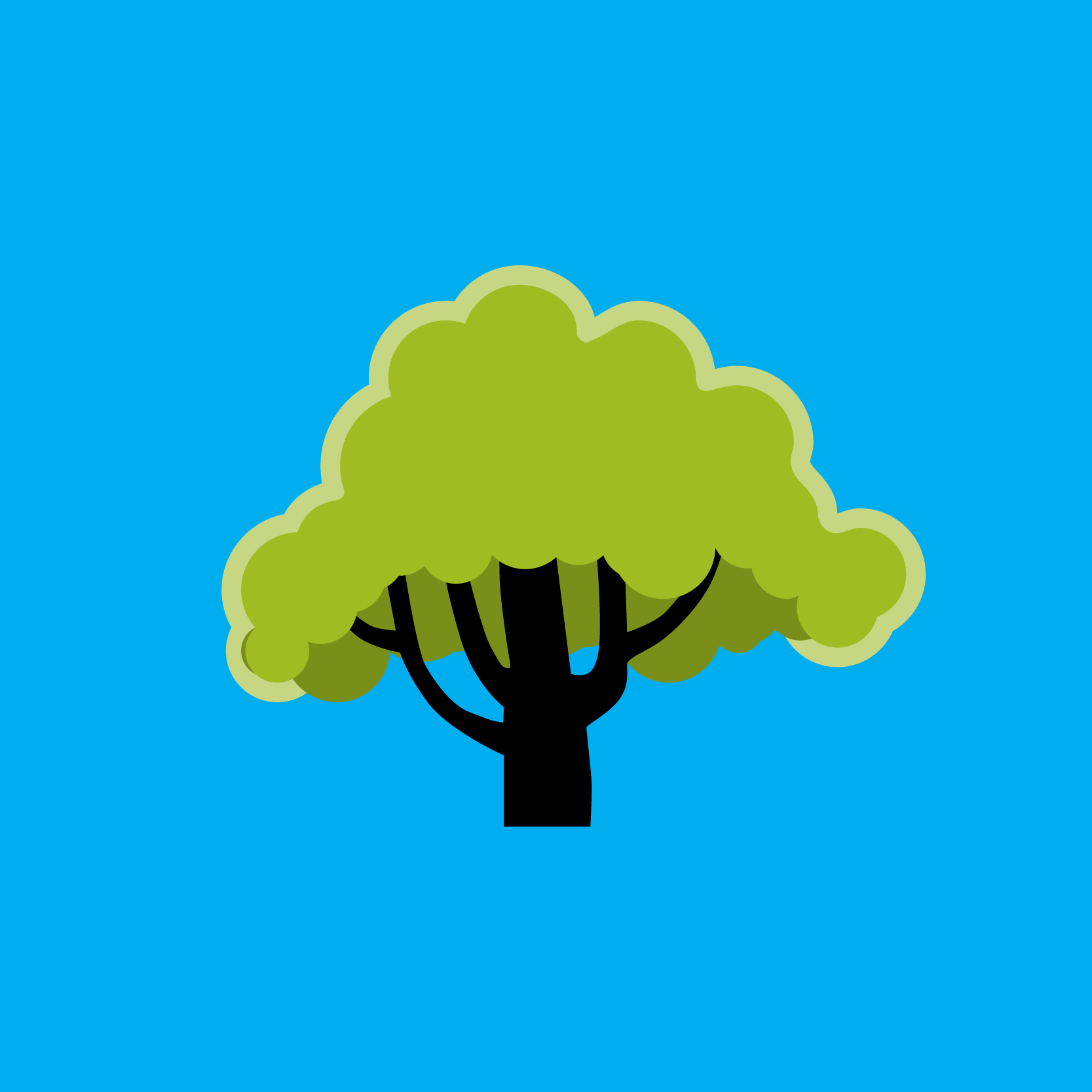 Community street tree program