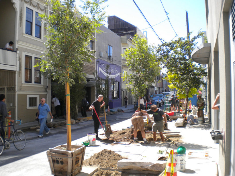 Residents participate in planting of street trees to beautify their neighborhood
